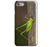 Green grasshopper up close and personal iPhone Case/Skin