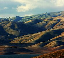 San Luis Reservoir by Polly Peacock