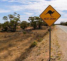 Beware Kangaroos. by Graeme Bayley