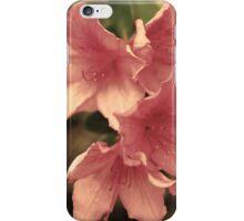 Faerie Flora iPhone Case/Skin