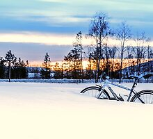 A Snowy Bike Ride by KarenMcDonald