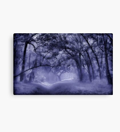In a Blue Mood Canvas Print