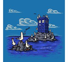 The Seagulls have the Phonebox Photographic Print