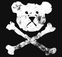 Pirate Teddy by Jesse Cain