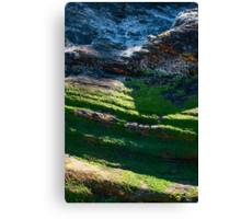 Portreath Cliff Texture Canvas Print