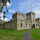 'Iolani Barracks by Barbara Morrison