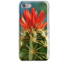 Color in the Western Desert iPhone Case/Skin