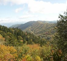 Great Smoky Mountains by Bob Hardy