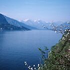 Como towards Bellagio Italy 198404240054m by Fred Mitchell