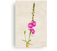 Sidalcea 3 Canvas Print
