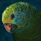 Parrot by a-bandomir