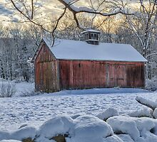 Weathering Winter  by Bill Wakeley