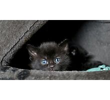 Little Miss Blue Eyes Photographic Print