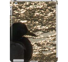 bird in sunset on ice iPad Case/Skin