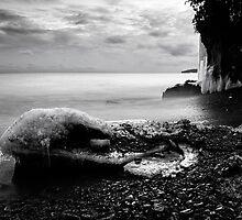 White Cliffs, Lake Superior by Michael Treloar