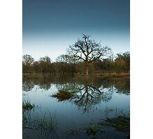 Still flooded  Photographic Print