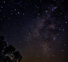 Star gazing by Chris Brunton