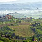 Tuscan Morning by Harry Oldmeadow
