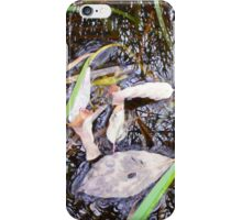 Leaves and Reflectons iPhone Case/Skin