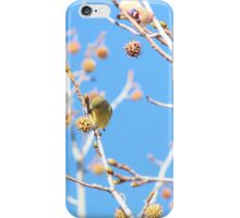 Precious Yellow Finch iPhone Case/Skin