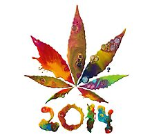Legalize 2014! Photographic Print