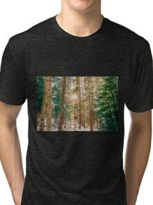 Winter Forest Sunshine Tri-blend T-Shirt