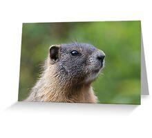 Marmot Portrait Greeting Card