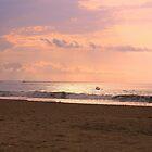 Bali Sunset by John Papaioannou