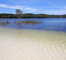 The lake. by Baska