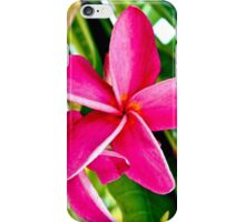 Tropical Pink Plumeria Flower Blooms iPhone Case/Skin
