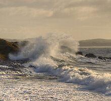 The Cumbrian Coast - Hodbarrow Beach by Jamie  Green