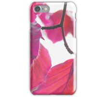Leaves 10 iPhone Case/Skin