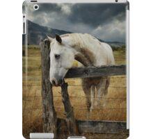 Horse Fence Sky.jpg iPad Case/Skin