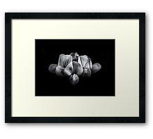 Backyard Flowers In Black And White 5 Framed Print