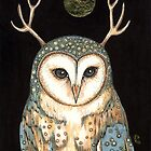 Owl Spirit by Anita Inverarity
