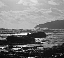 Looking towards Durlston Head from Peveril Point by ArtemBonda