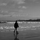Winter walks along the beach by ArtemBonda