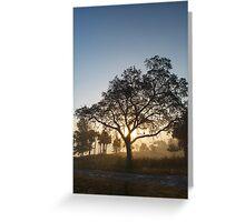 Foggy sun raise… Greeting Card