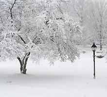 Lamplit Snowfall by Marriet