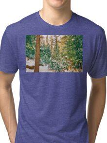 Winter Forest Golden Light Tri-blend T-Shirt