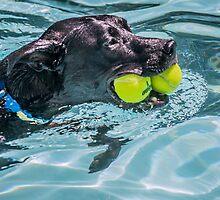Ball Dog by Leon Herbert
