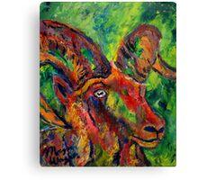 Doll Sheep Canvas Print