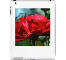 Red Rose ...... iPad Case/Skin
