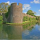 Bishop's Palace Moat, Wells by RedHillDigital