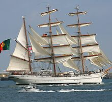 THE BARQUE FROM PORTUGAL by fsmitchellphoto