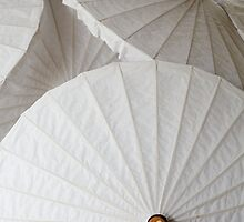 White Umbrellas by DebWinfield