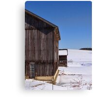 Side by side in the snow Canvas Print