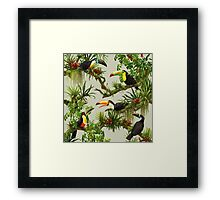 Toucans and bromeliads - canvas background Framed Print