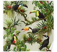 Toucans and bromeliads - canvas background Poster