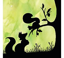Woodland Shadows - Fox and Squirrel:Spring Photographic Print